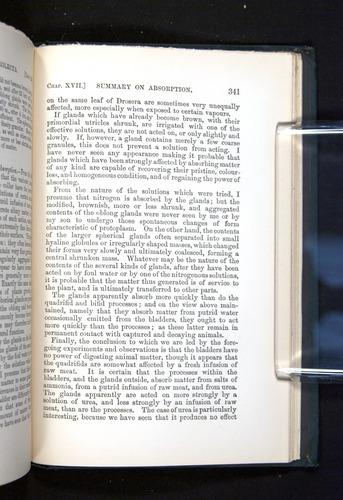 Image of Darwin-F1225-1888-341