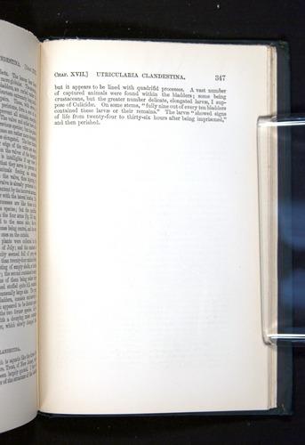 Image of Darwin-F1225-1888-347