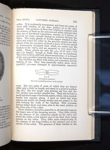 Image of Darwin-F1225-1888-351