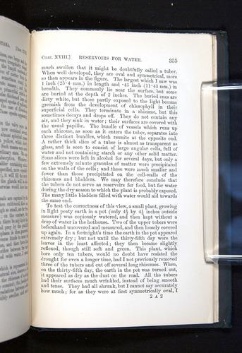 Image of Darwin-F1225-1888-355