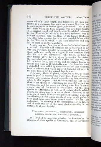 Image of Darwin-F1225-1888-356