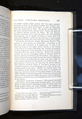 Image of Darwin-F1225-1888-357