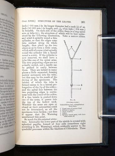 Image of Darwin-F1225-1888-361
