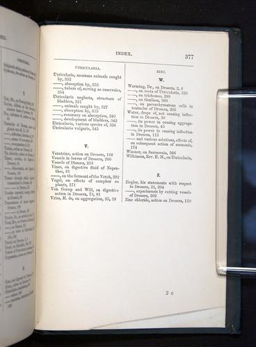 Image of Darwin-F1225-1888-377