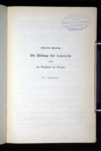 Image of Darwin-F1404-1882-000-tp1