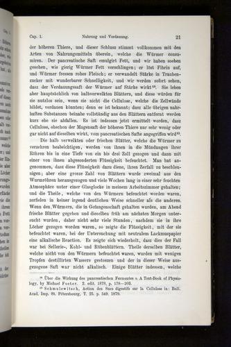 Image of Darwin-F1404-1882-021