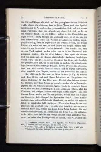 Image of Darwin-F1404-1882-024