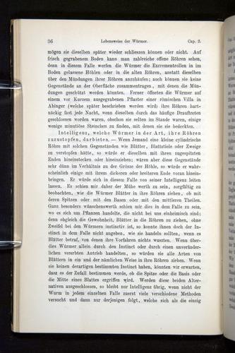 Image of Darwin-F1404-1882-036