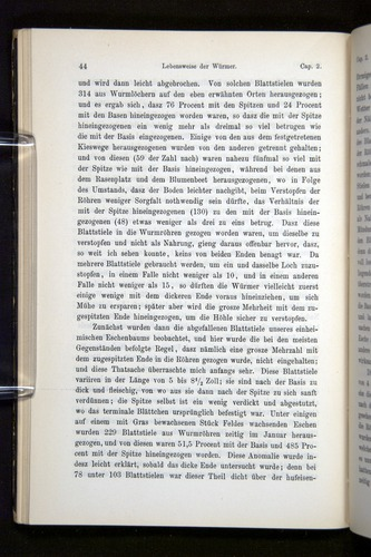 Image of Darwin-F1404-1882-044