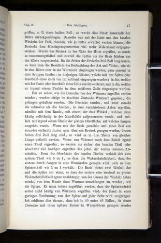 Image of Darwin-F1404-1882-047