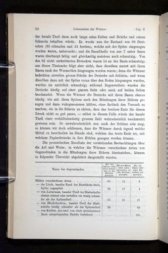 Image of Darwin-F1404-1882-050