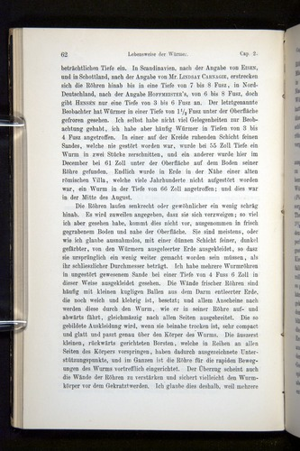 Image of Darwin-F1404-1882-062