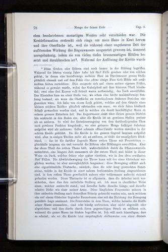Image of Darwin-F1404-1882-078