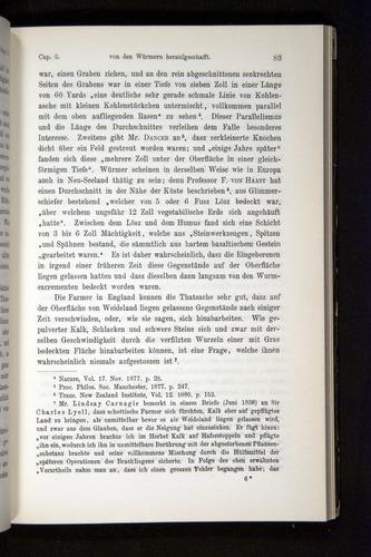 Image of Darwin-F1404-1882-083