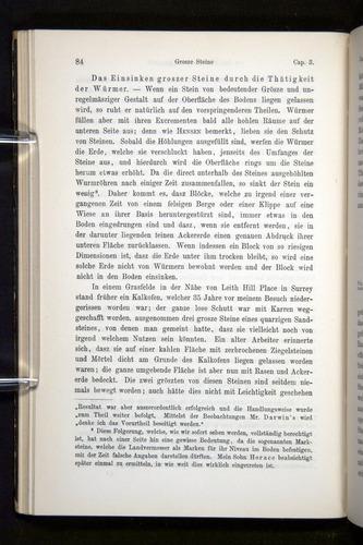 Image of Darwin-F1404-1882-084