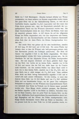 Image of Darwin-F1404-1882-086