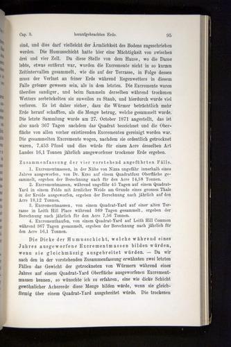 Image of Darwin-F1404-1882-095