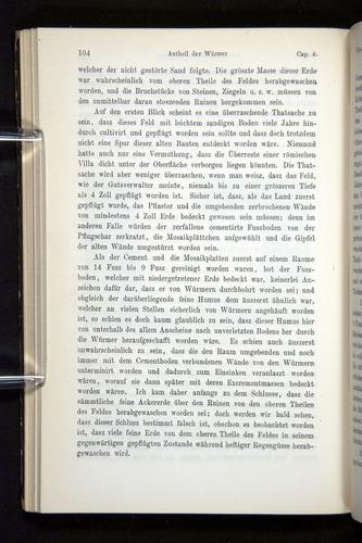 Image of Darwin-F1404-1882-104