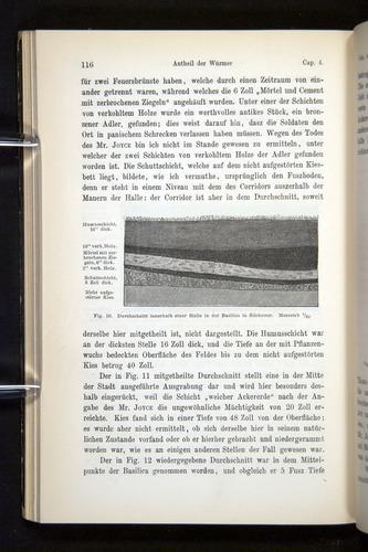 Image of Darwin-F1404-1882-116