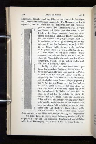 Image of Darwin-F1404-1882-120