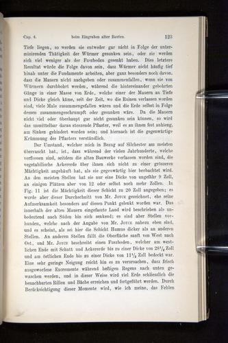 Image of Darwin-F1404-1882-123