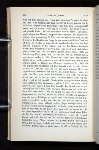 Image of Darwin-F1404-1882-128