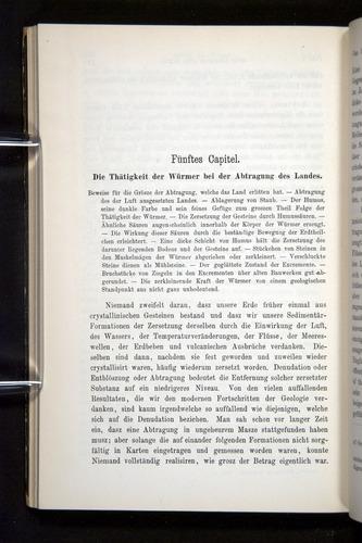 Image of Darwin-F1404-1882-130
