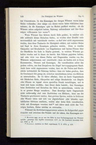 Image of Darwin-F1404-1882-140