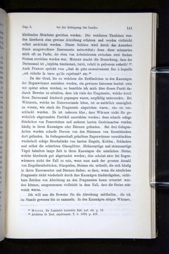 Image of Darwin-F1404-1882-141