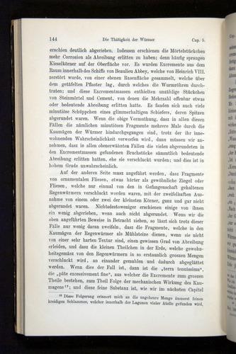 Image of Darwin-F1404-1882-144