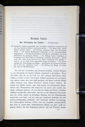 Image of Darwin-F1404-1882-147