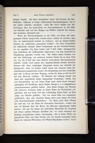 Image of Darwin-F1404-1882-157