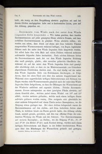 Image of Darwin-F1404-1882-161
