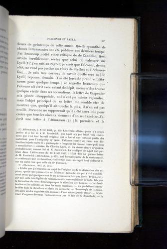 Image of Darwin-F1514.2-1888-307