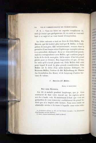 Image of Darwin-F1514.2-1888-330