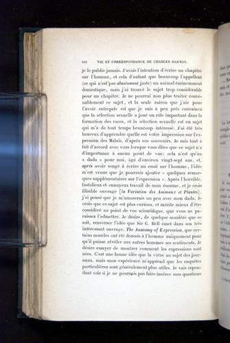 Image of Darwin-F1514.2-1888-410