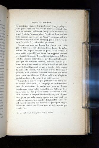 Image of Darwin-F1514.2-1888-445