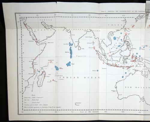 Image of Darwin-F275-1874-000-f1-a
