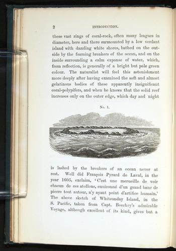 Image of Darwin-F275-1874-002