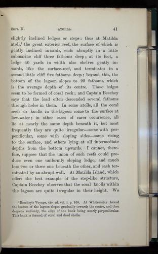 Image of Darwin-F275-1874-041