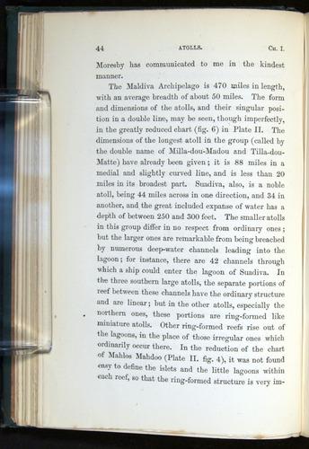 Image of Darwin-F275-1874-044