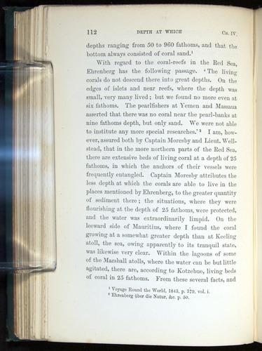 Image of Darwin-F275-1874-112