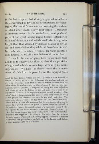 Image of Darwin-F275-1874-125