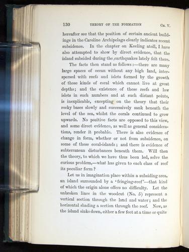 Image of Darwin-F275-1874-130