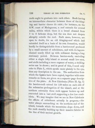 Image of Darwin-F275-1874-136