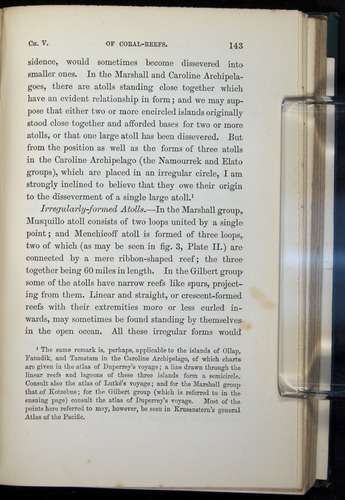 Image of Darwin-F275-1874-143