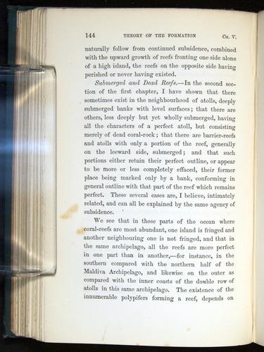 Image of Darwin-F275-1874-144