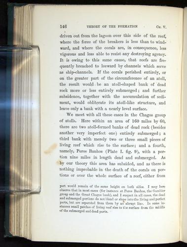Image of Darwin-F275-1874-146