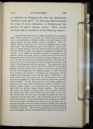 Image of Darwin-F275-1874-153
