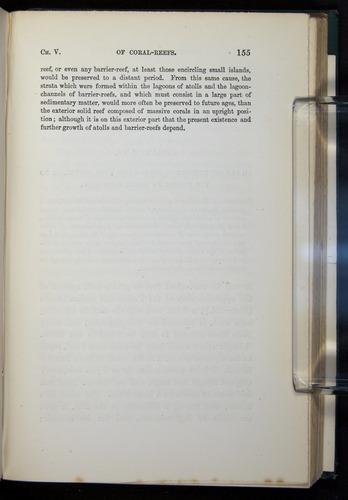 Image of Darwin-F275-1874-155